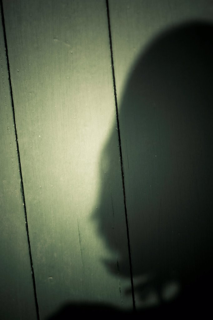 Shadow of Female Head : Stock Photo