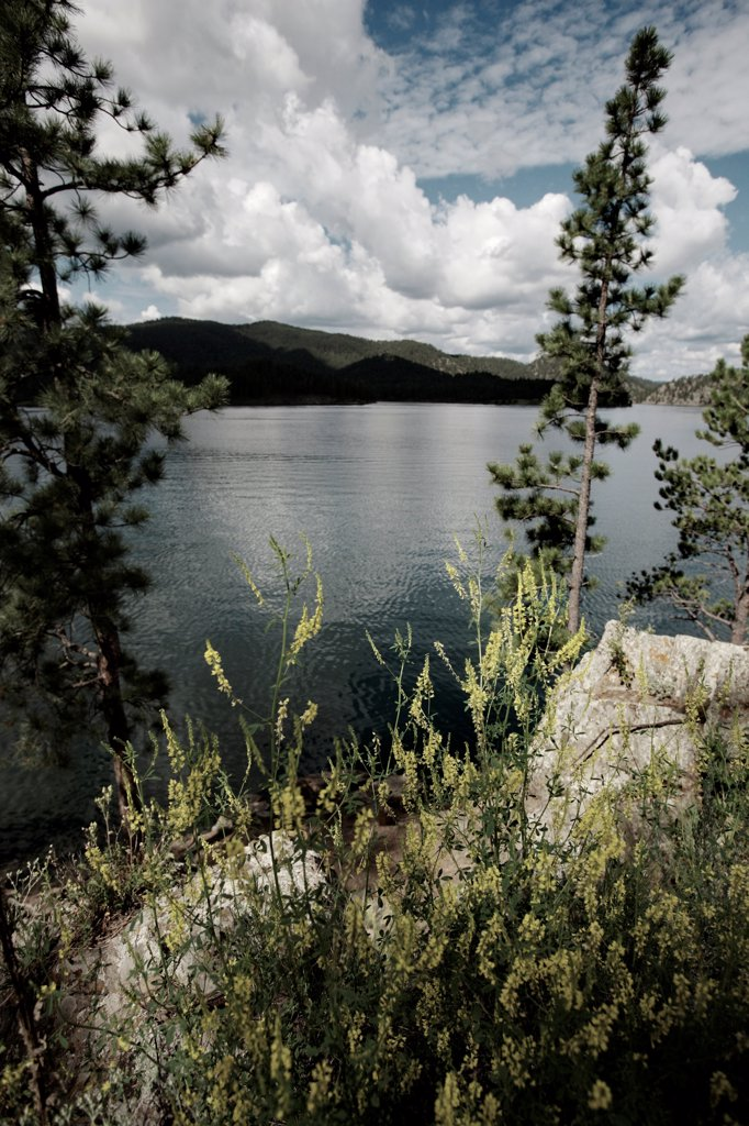Stock Photo: 1838-14271 Lake With Mountains in Background, Black Hills, South Dakota, USA