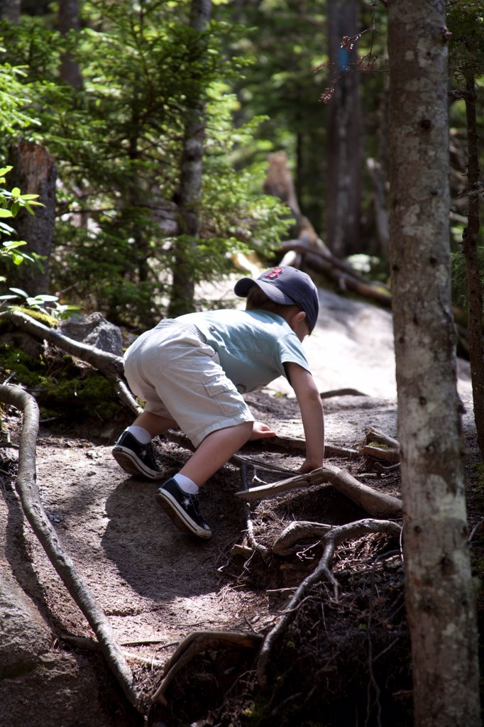 Stock Photo: 1838-14374 Young Boy Climbing Rocky Path in Woods, Rear View