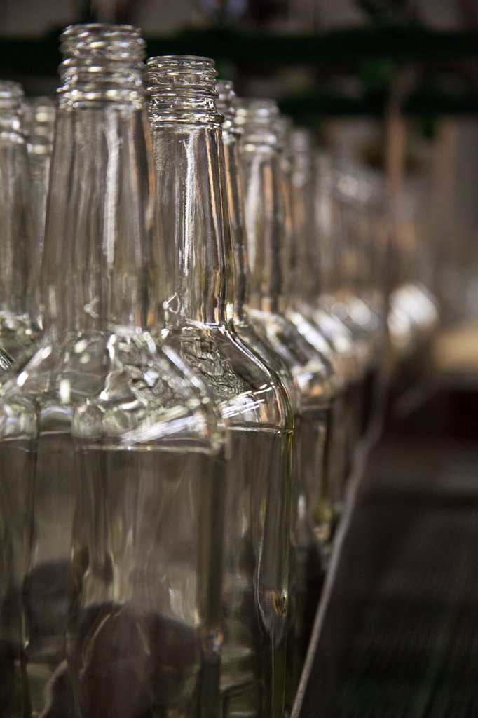 Stock Photo: 1838-14402 Row of Empty Whiskey Bottles