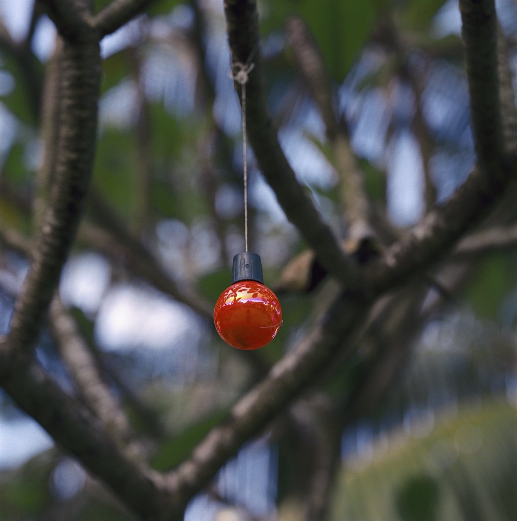 Stock Photo: 1838-2953 Red Ornament