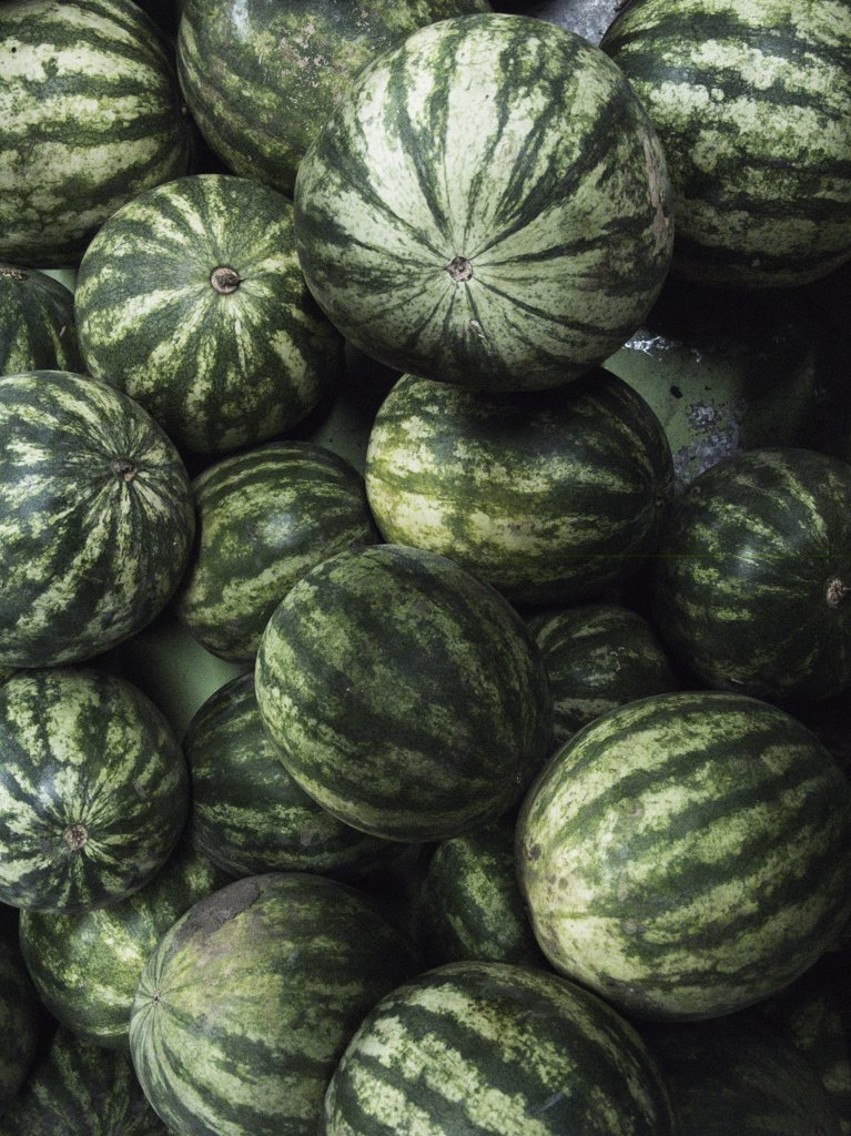 Watermelons : Stock Photo