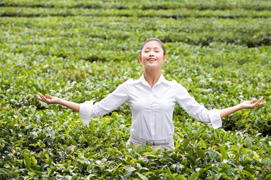 Young Businesswoman Enjoying a Tea Field : Stock Photo