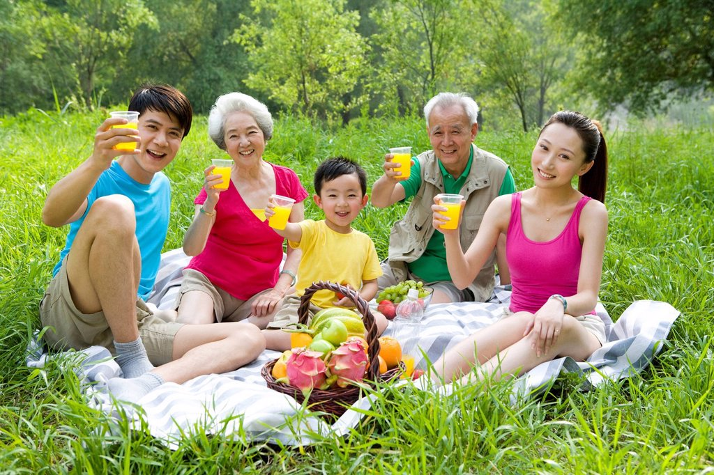 Portrait of a family picnicking : Stock Photo