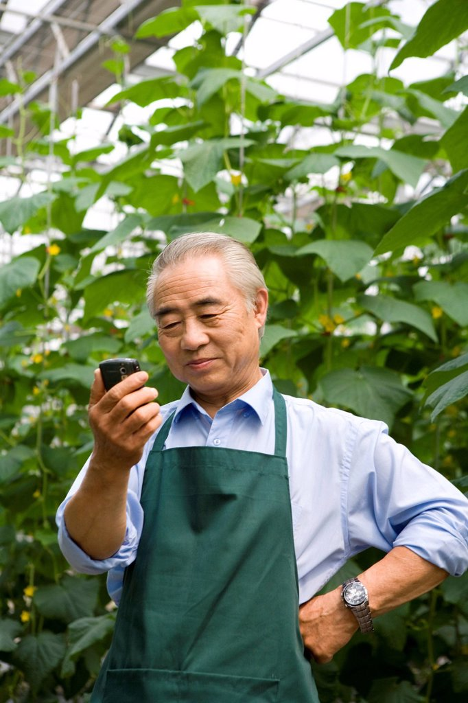 Farmer looking at cellphone in modern farm : Stock Photo