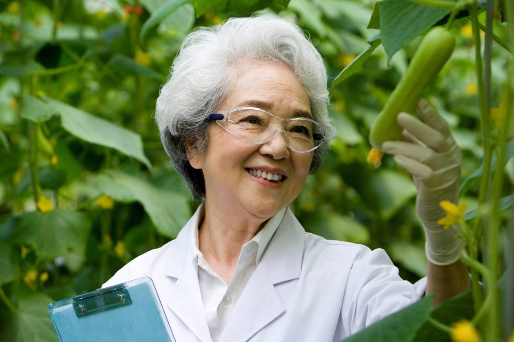 Scientists doing research in modern farm : Stock Photo