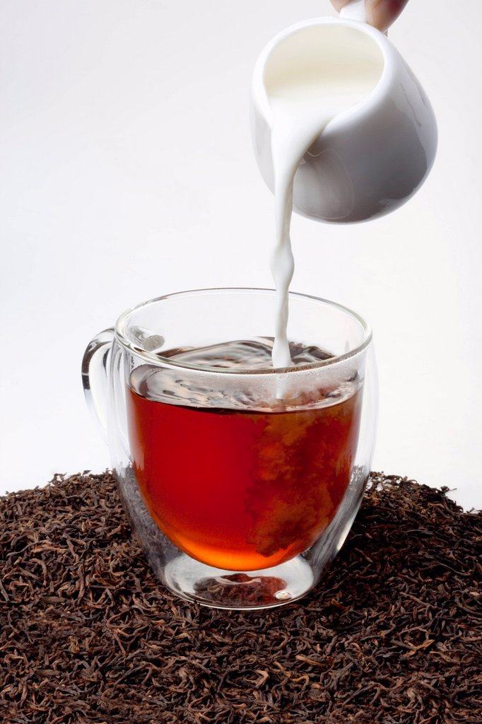 Black tea and milk : Stock Photo