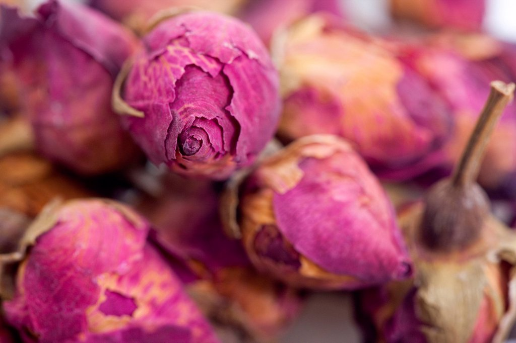 Close up of several rose buds, Chinese Herbal Medicine : Stock Photo
