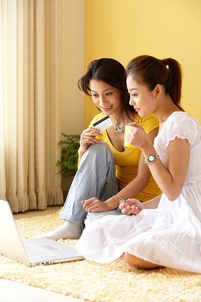 Stock Photo: 1839R-4215 Young Women With A Computer