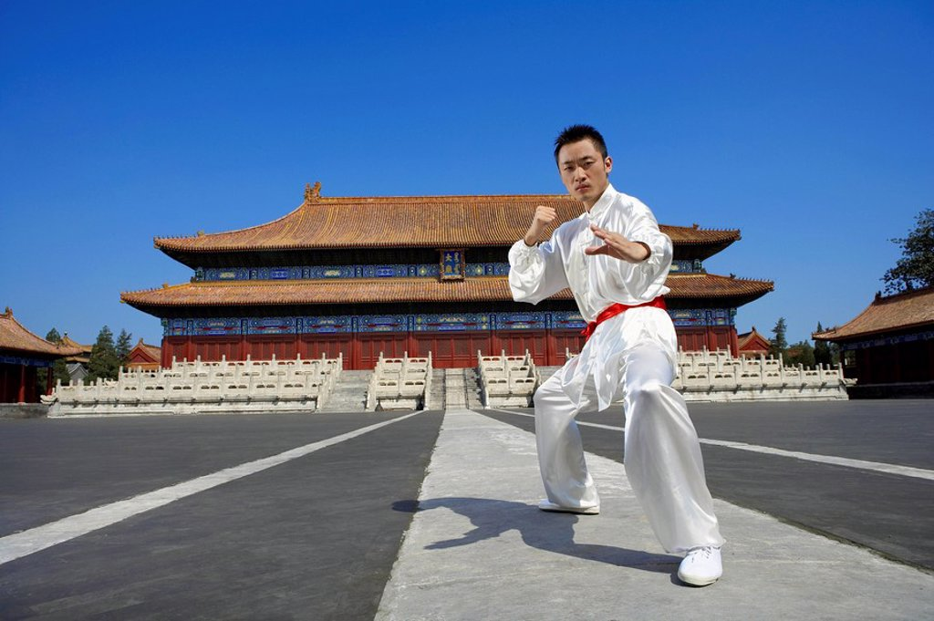 Portrait Of Young Man Practicing Martial Arts : Stock Photo