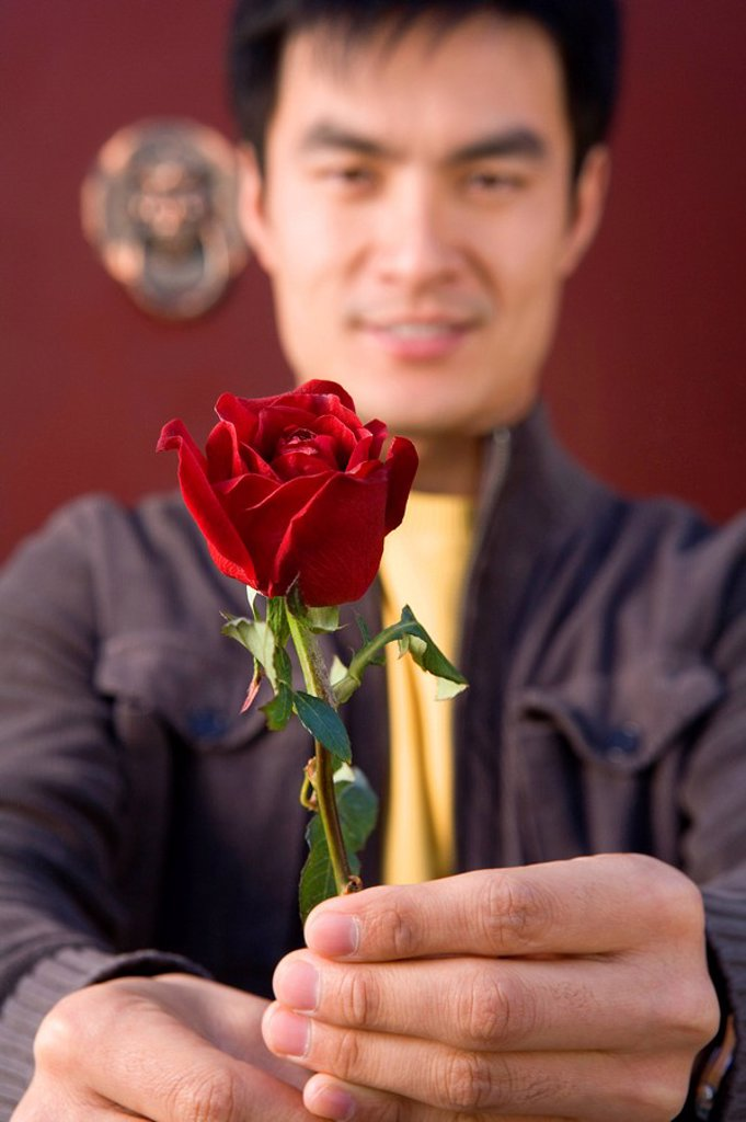 Stock Photo: 1839R-5209 Young Man Offering A Single Rose