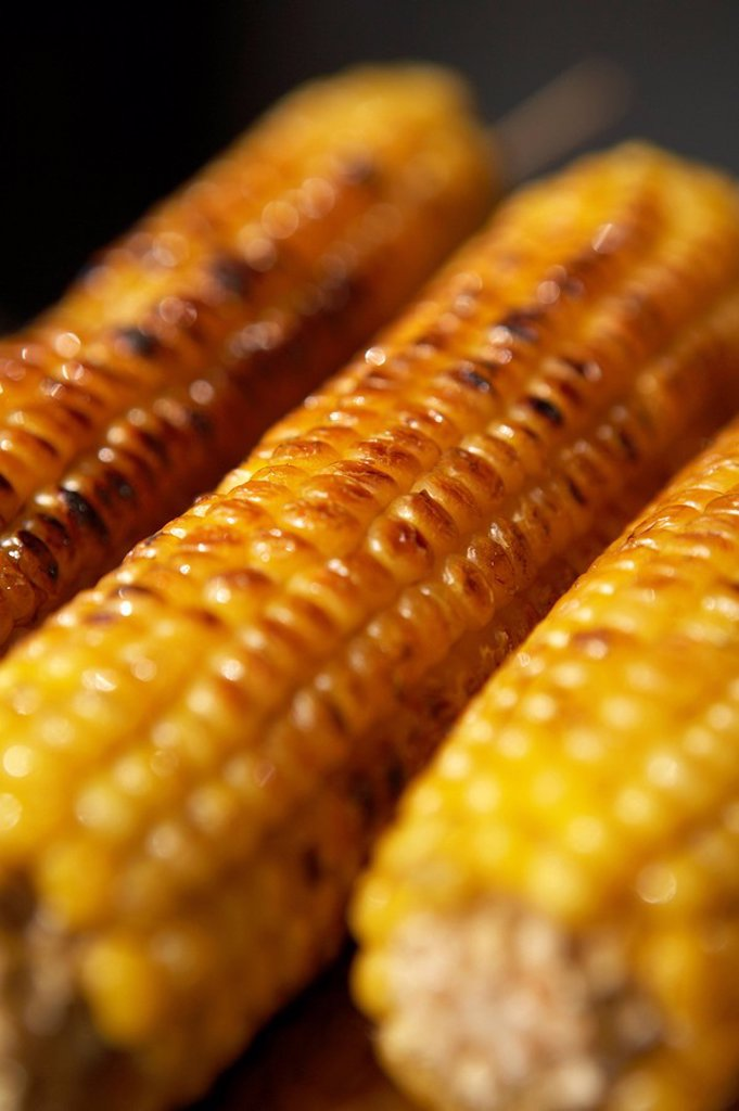 Stock Photo: 1839R-5947 Close Up Of Corn Cobs
