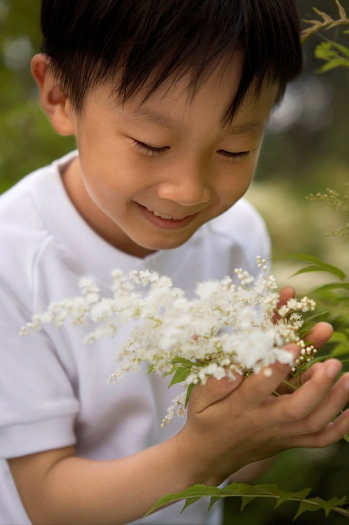 Young Boy Smelling Flowers In A Park : Stock Photo