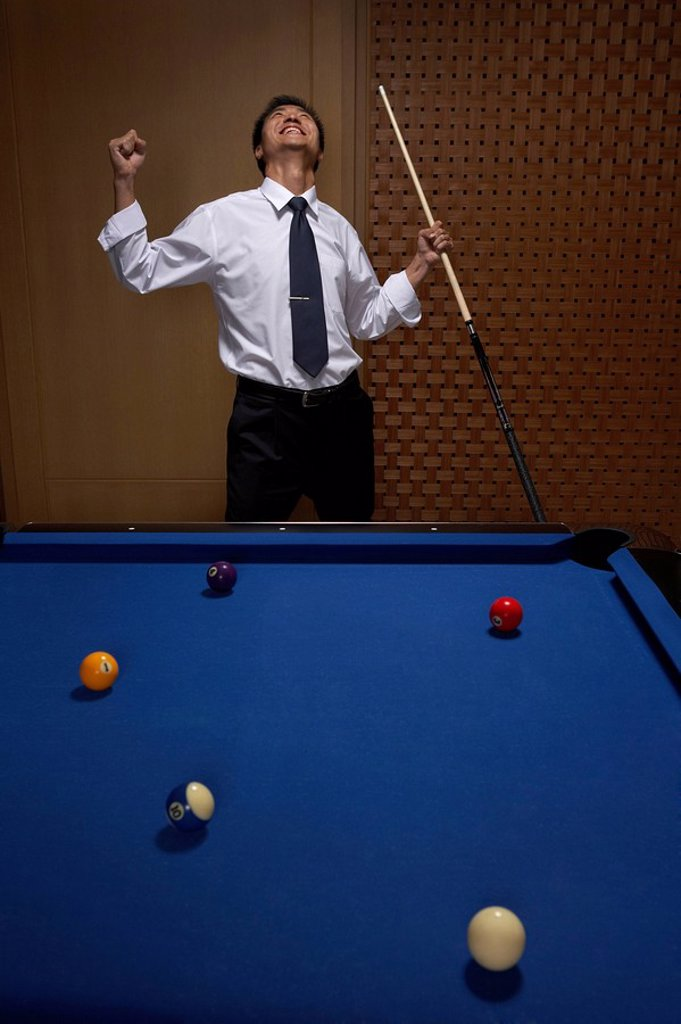 Stock Photo: 1839R-6824 Success at the billiards table