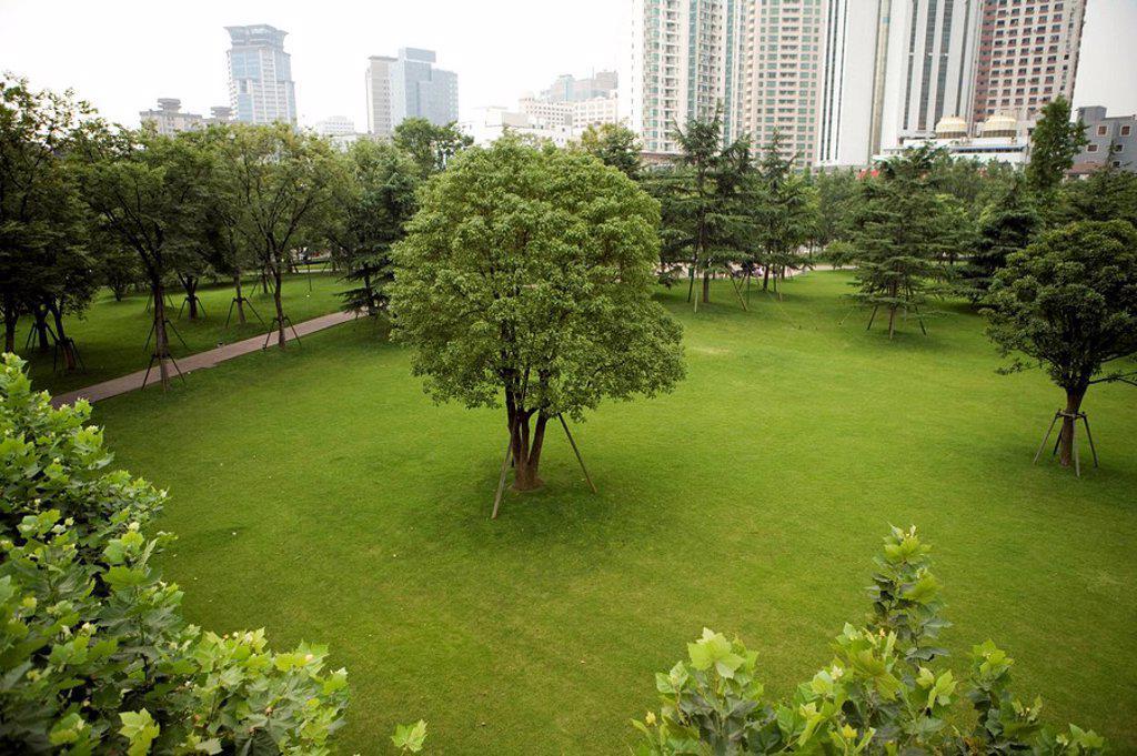 Stock Photo: 1839R-6879 Urban green space, Shanghai