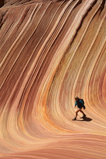 Hiking in the sandstone swirls of The Wave in the Vermilion Cliffs Wilderness Area in northern Arizona. : Stock Photo