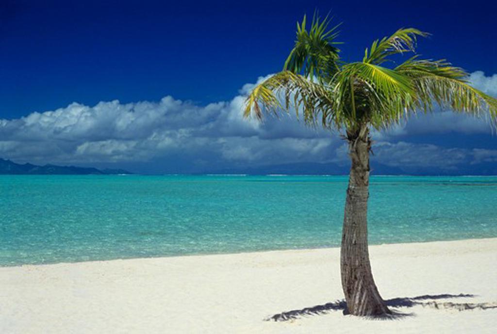 Matira Beach on the island of Bora Bora, Society Islands, French Polynesia, South Pacific. : Stock Photo