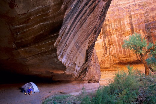 Camping in Willow Gulch, Escalante Canyons, Glen Canyon National Recreation Area, Utah. : Stock Photo