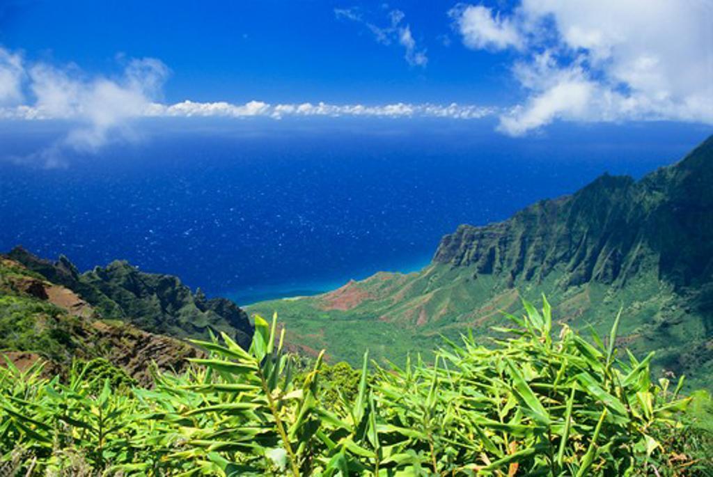 Stock Photo: 1840-12907 Kalalau Valley viewed from Kalalau Overlook, Kauai, Hawaii.