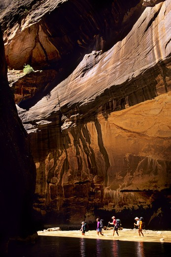 Stock Photo: 1840-13139 Hiking in the North Fork of the Virgin River in the Zion Narrows in Zion National Park, Utah.