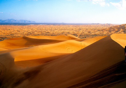 View Across Sand Dunes : Stock Photo