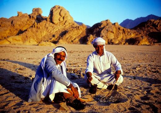Sinai, Bedouins, Egypt : Stock Photo