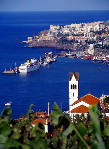 Funchal : Stock Photo