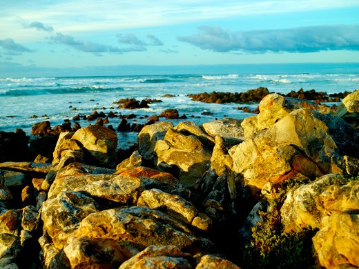 Agulhas, Southern Most Point in Africa : Stock Photo