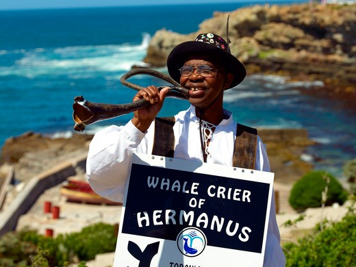 Stock Photo: 1840-20269 Agulhas, Hermanus Whale Crier