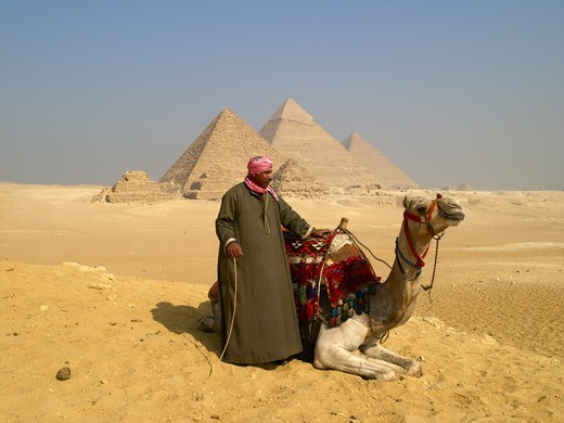 Stock Photo: 1840-21461 Giza, Cairo Camel Rider