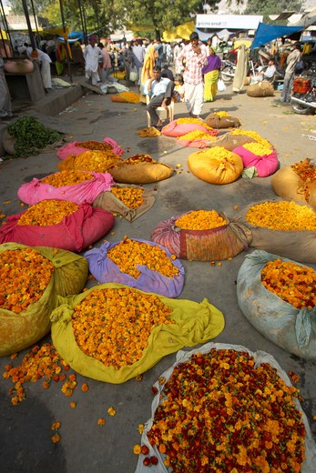 Jaipur, Street Market : Stock Photo