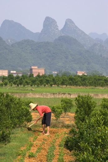 Yangshuo, Rural Scene : Stock Photo