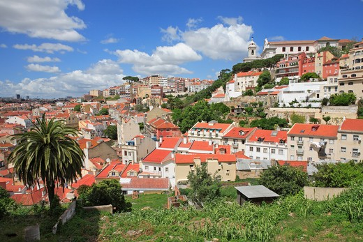 Stock Photo: 1840-24023 Portugal, Lisbon, Alfama, View Towards Esplanda Da Igreja Da Greca