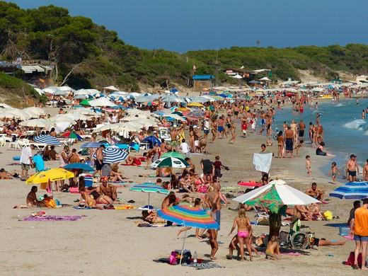 Ibiza, Platja De Ses Salines : Stock Photo