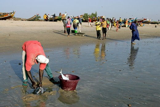 Gambia, Sangan Beach, Fishermen : Stock Photo