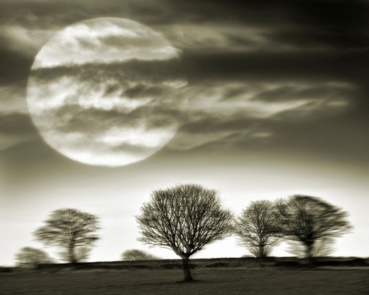 England: Cotswold Landscape : Stock Photo