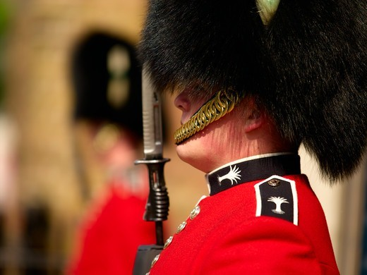 Welsh Guards, St. James's Palace : Stock Photo