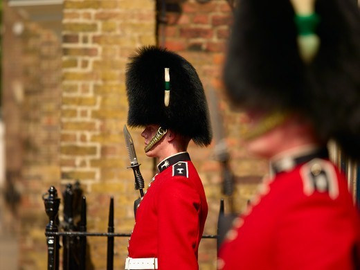 Stock Photo: 1840-30989 Welsh Guards, St. James's Palace