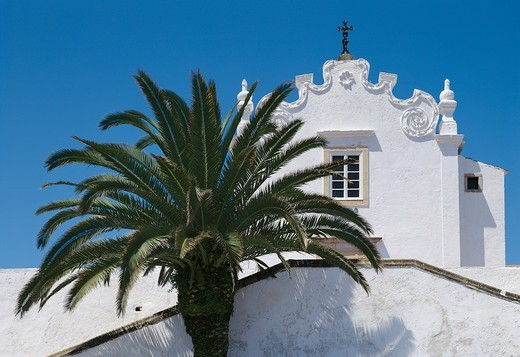 Albufeira Church & Palm Tree : Stock Photo
