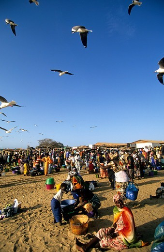 Stock Photo: 1840-37874 Gambia A Crowded Fish Market On The Beach