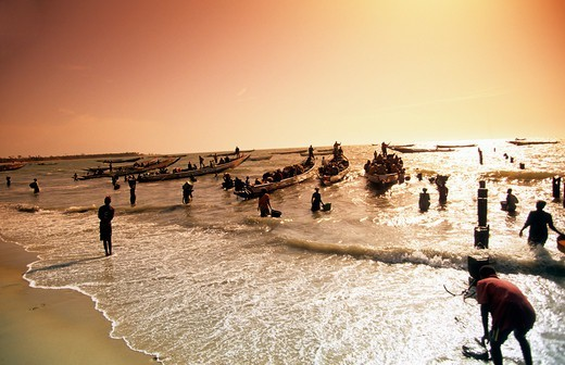 Gambia,  A Crowded Fish Market On The Beach : Stock Photo