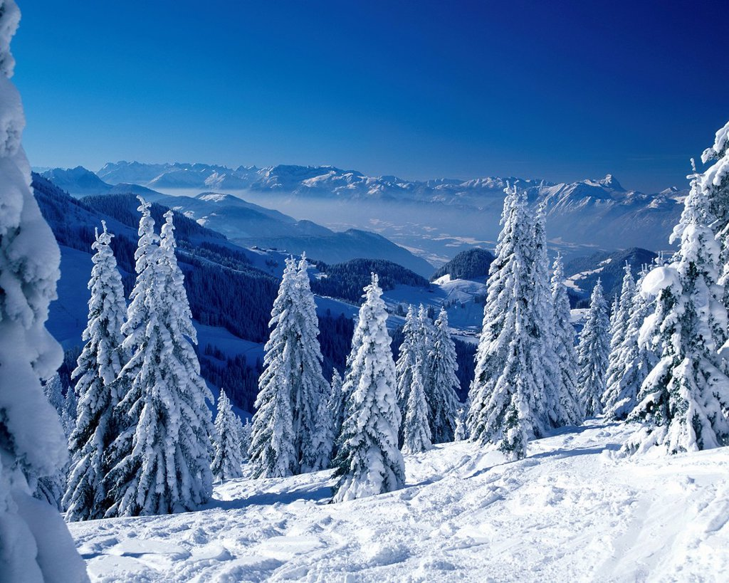Stock Photo: 1841-118915 Winter landscape in the Alps, Tyrol, Ausria