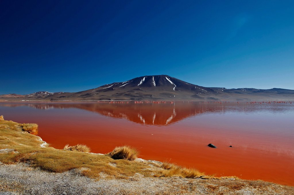 Stock Photo: 1841-120835 Mountain at the Laguna Colorada in the Eduardo Avaroa Andean Fauna National Reserve, Bolivia