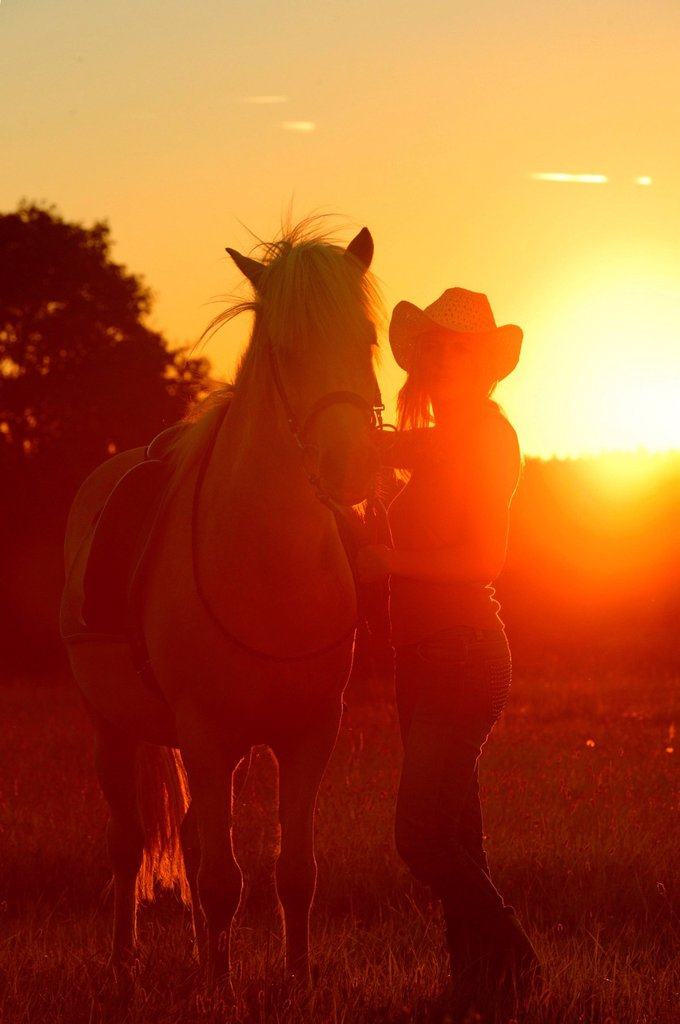 Stock Photo: 1841-124123 Young woman with horse on meadow in backlight