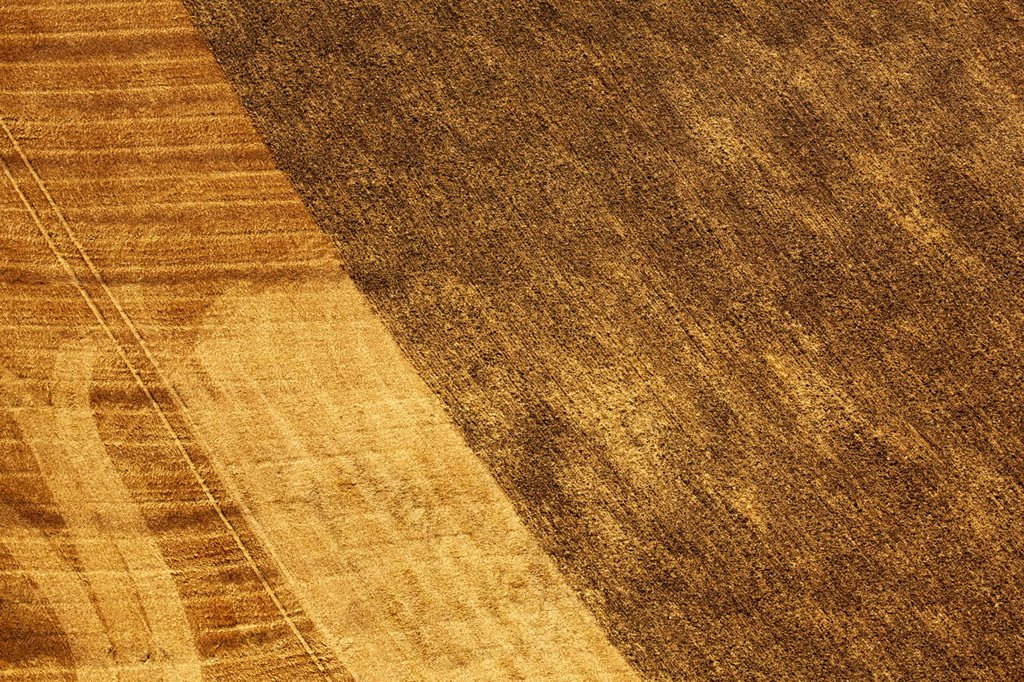 Stock Photo: 1841-124206 Half harvested field, aerial photo