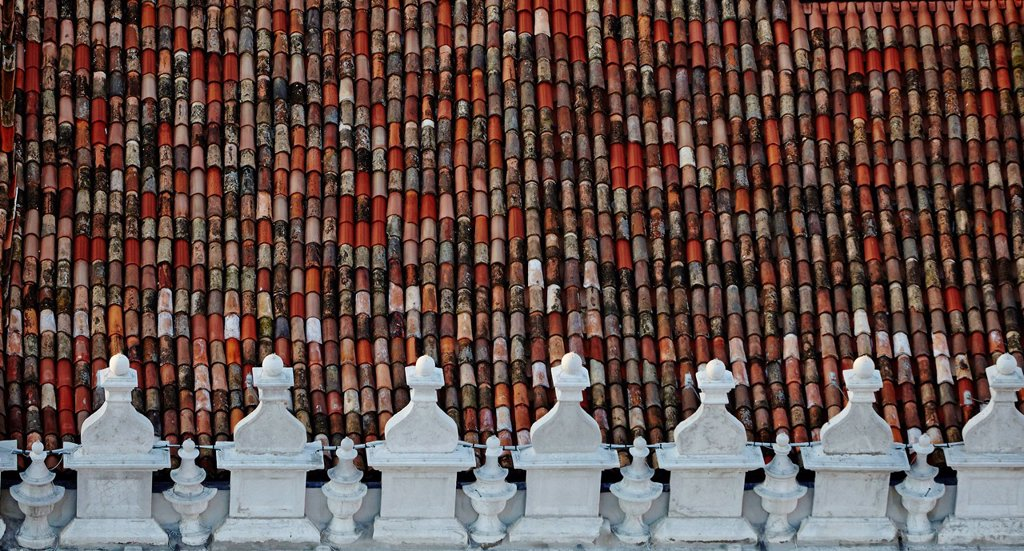 Roof tiles of a building in Venice, Italy : Stock Photo