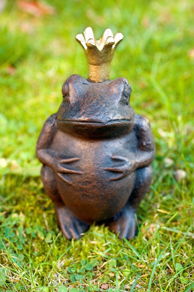 Stock Photo: 1841-15801 Close_up of figurine of frog prince