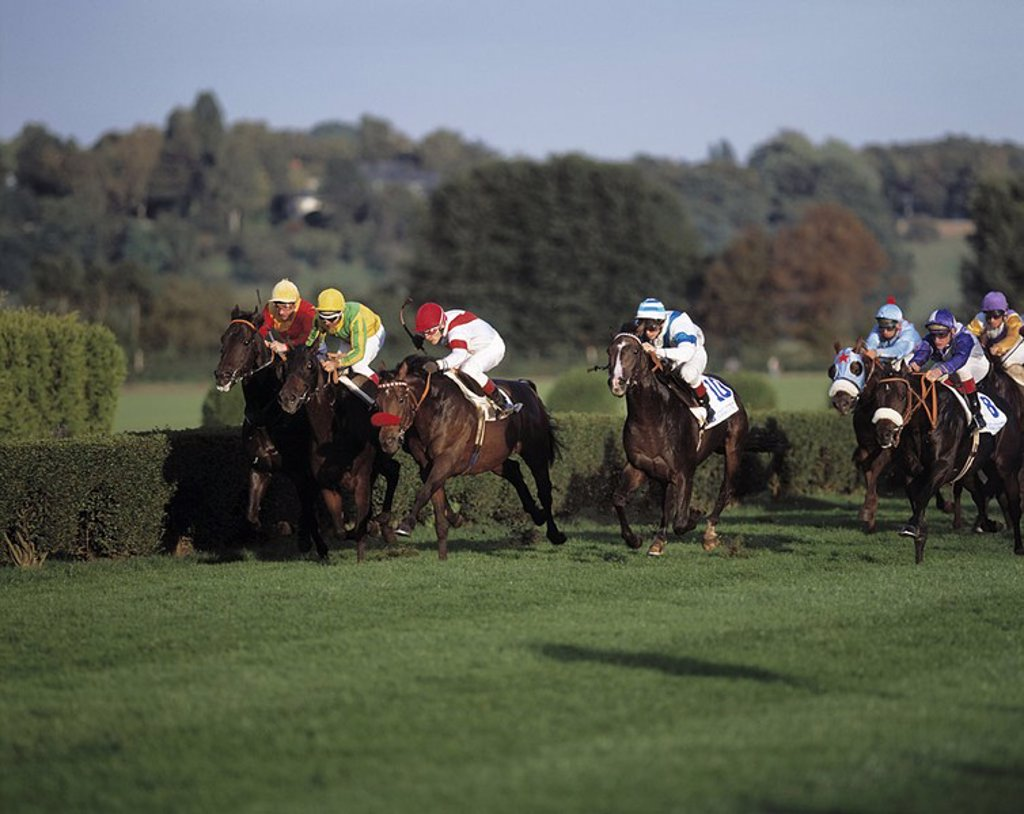 Jockeys riding horses during race, Dusseldor, Germany : Stock Photo