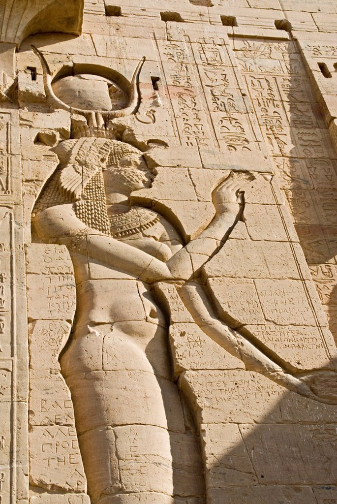 Relief on the wall of the Temple of Philae, Egypt, close_up, low angle view : Stock Photo