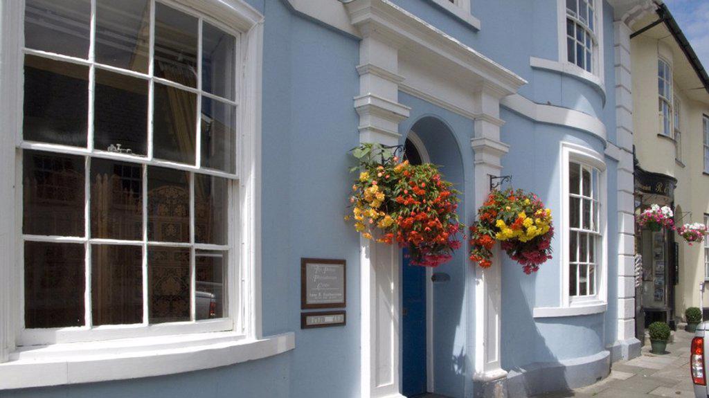 Flower on entrance of building, Pilton, Barnstaple, Devon, England : Stock Photo